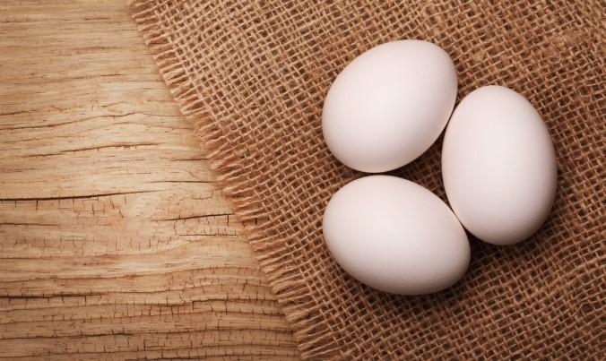 mutant eggs